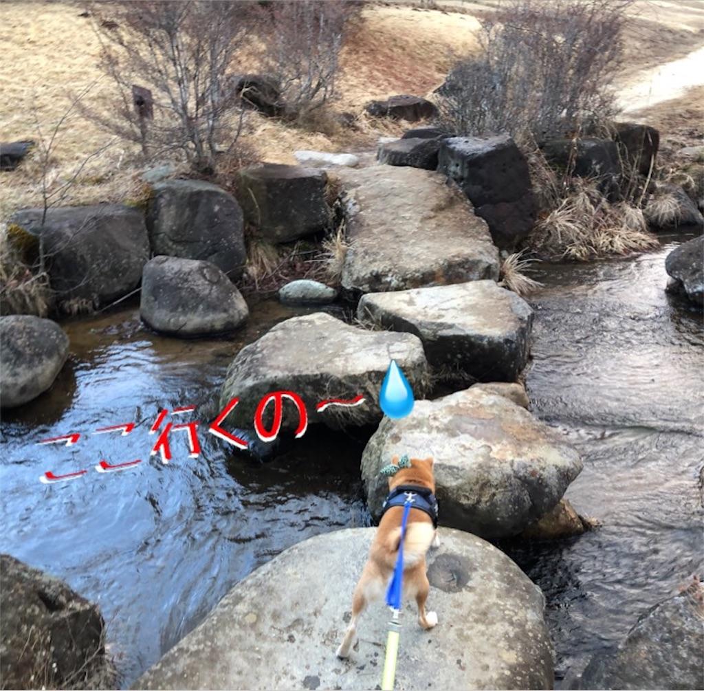 f:id:Snowkey:20200222111031j:image