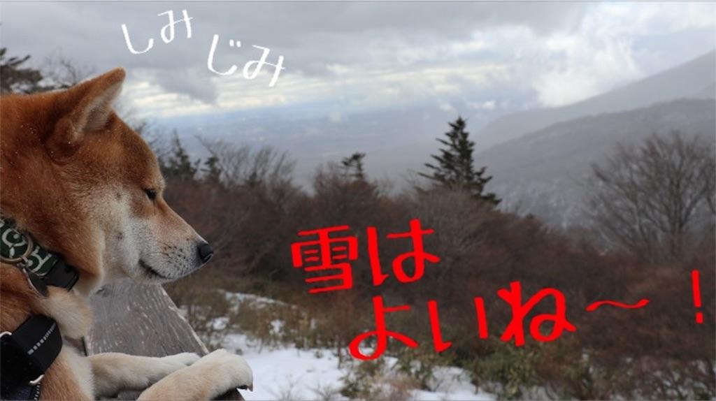 f:id:Snowkey:20200223214340j:image