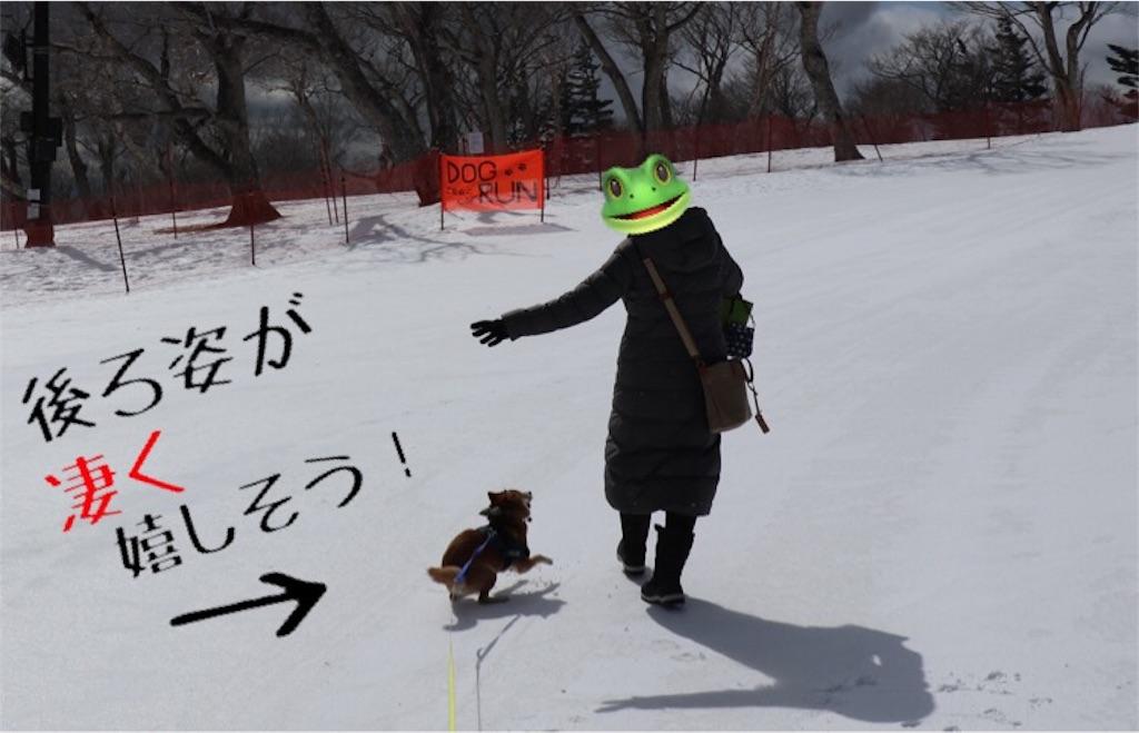 f:id:Snowkey:20200223215956j:image