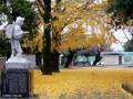 [街] 嵐の後 2008-12-05撮影