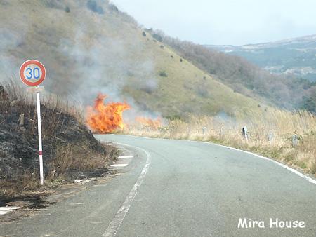 俵山の野焼き 2009/03/21