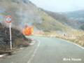 [阿蘇] 俵山の野焼き 2009/03/21