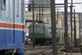 [電車][熊本電鉄]200系(元南海電鉄22000系)と元東急電鉄5000形 2009-05-30  14:01:02