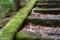 五家荘せんだん轟の滝にて 2006-04-27 11:35:34