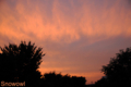 [空][夕焼け]2009-06-24  19:32