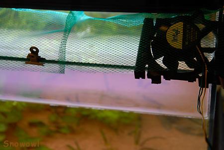 2009-08-31 16:05:00 水槽冷却ファン