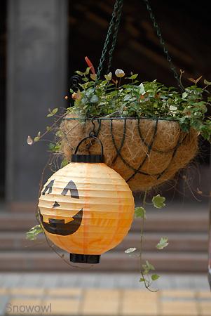 台風近づく熊本市にて 2009-10-07 13:08:38