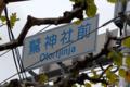 [東京][祭]2009-11-12 13:23:58 酉の市