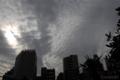 [空][雲]2009-11-16 13:09:54 東京都文京区の空