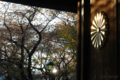 [東京][街角]2009-11-21 15:36:01 靖国神社