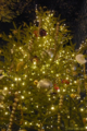 [クリスマス]2009-12-12 17:15:14