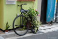 [東京][街角]東京都文京区 2009-11-06 15:54:40