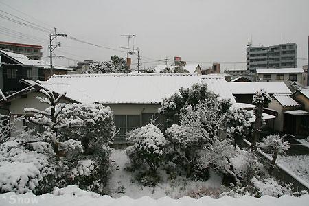 積雪7cm 2010-01-13 09:52:19