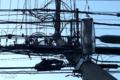 [電線]2010-01-19 東京都文京区