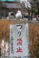 [東京][野鳥]不忍池 2010-02-21 11:32:01