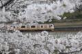 [東京][桜]2010-04-03 16:27:16 中央線と外堀の桜