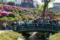 根津神社 2010-04-29 14:51:58