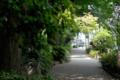 [東京][街角]不忍通り 2010-06-07 1046:52