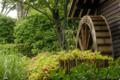 [東京]府中市郷土の森博物館 2010-06-09 13:18:25