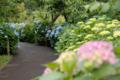 [東京]府中市郷土の森博物館 2010-06-09 14:05:10