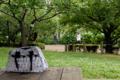 [東京]府中市郷土の森博物館 2010-06-09 14::29:41