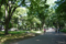 [東京[街角]上野公園 2010-07-17 14:17:38
