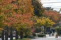 [秋田]ハミングロード 2010-10-29 11:19:29