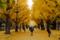 東大安田講堂前 2010-12-05 15:07:30