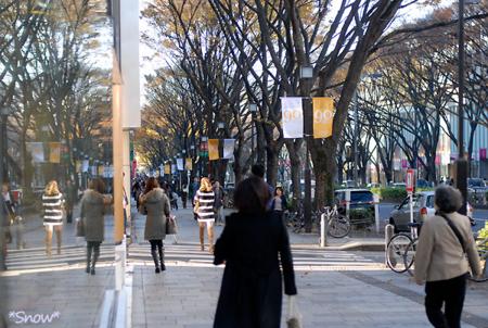 表参道 2010-12-03 14:45:26