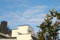 [空][雲]2011-01-14 08:23:12