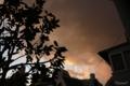 [空][雲][夕焼け]2011-03-09 17:31:50