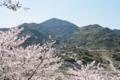 [熊本]花岡山から見た金峰山 2011-04-04 14:48:09