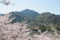 花岡山から見た金峰山 2011-04-04 14:48:09