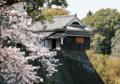 [熊本]熊本城 2011-04-06 13:29:04