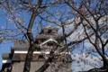 [熊本]熊本城 2011-03-25 15:52:24