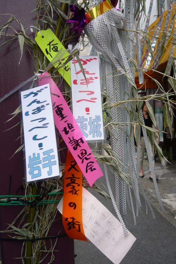 七夕@不忍通り 2011-07-08 10 29:23