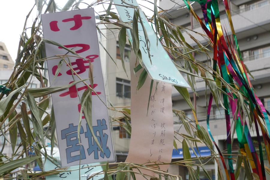 七夕@不忍通り 2011-07-08 10:30:28