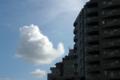[空][雲]2011-08-04 16:22:19