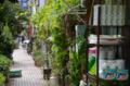 [東京][街角][路地]藍染大通り 2011-10-11 13:05:30