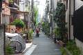[東京][街角][路地]根津 2011-10-25 10:56:31