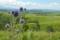 ヒゴタイ公園 2011-08-27 12:00:27
