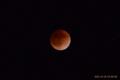 [空][月]皆既月食 2011-12-10 23:10:41