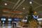 成田空港のクリスマスツリー 2011-12-02 09:50:52