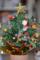 クリスマスツリー 2011-12-15 13:14:05