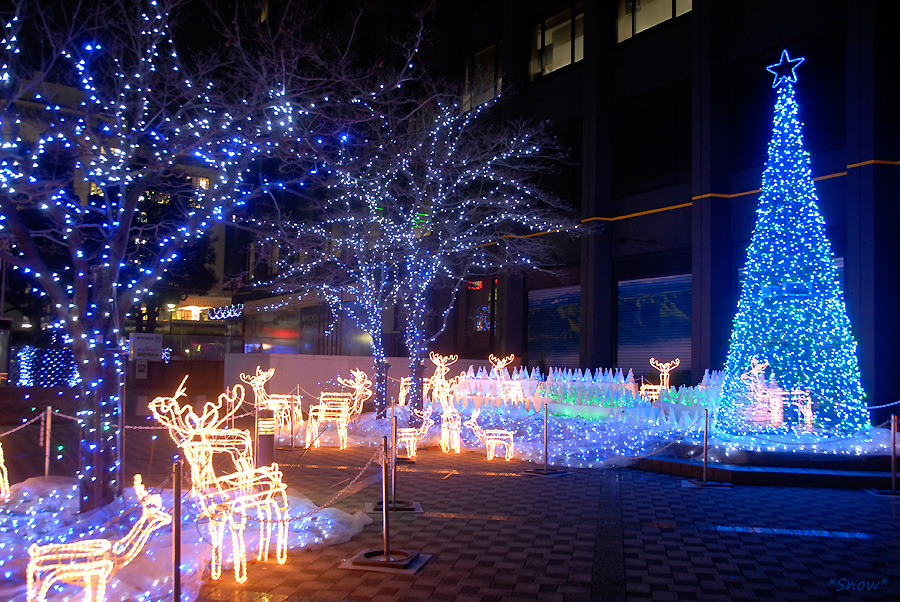 熊本市繁華街 2006-12-21 19:42:19
