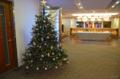 [ロンドン][クリスマス]BAファーストクラス・ラウンジ 2011-12-06 16:52:49