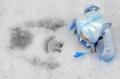 [ねんどろいど]雪の日の雪ミク