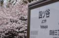 [東京][街角][桜]丸ノ内線四ツ屋駅 2012-04-07