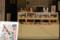 谷中銀座 2012-04-17