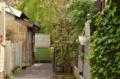 [東京][街角][路地]谷中の路地 2012-04-17